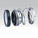 Spring Elastomer Mechanical Seal Fbd with O-Ring Used in Process Pump